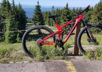 Mt. Bike