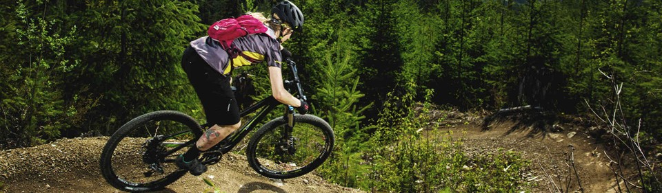 Ride the 2015 Trek Mountain Bike Rental Fleet.